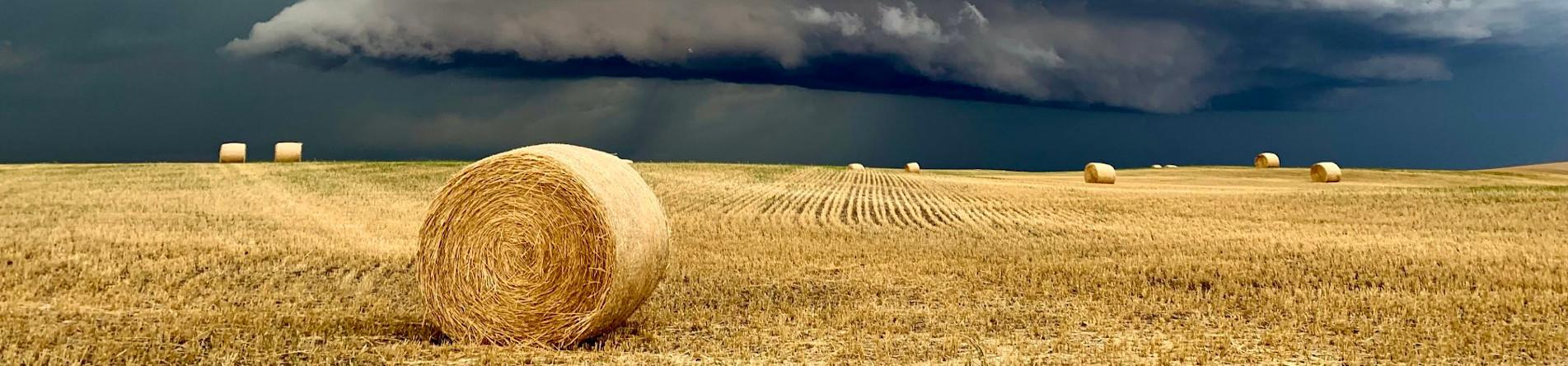 Hay Field with Storm on the horizon